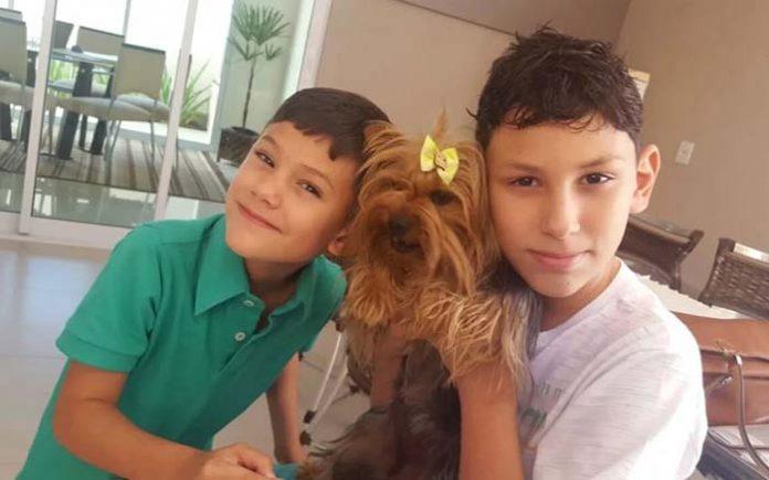 Relação entre animais de estimação e crianças traz série de benefícios