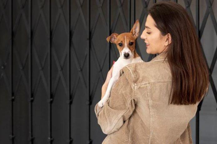 TJ-SP decide que multa por circulação de animais em elevador social é válida.