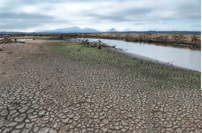 seca devido a falta de água